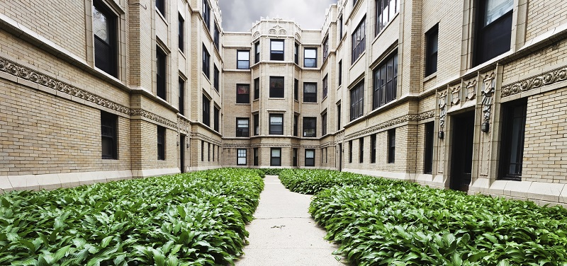 Vintage Apartment buildings with Hostas in Rogers Park, Far North Side, Chicago
